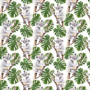 Koala Pattern White