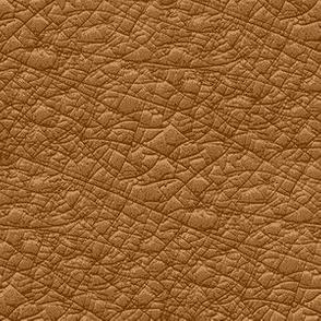 09804596 : wrinkled flesh : brown