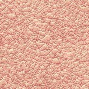 09804597 : wrinkled flesh : pink