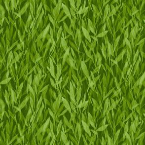 leafy environment grass green