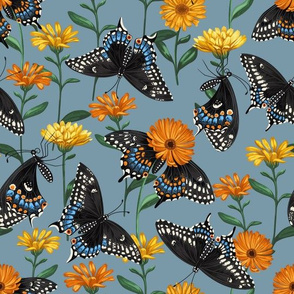 Black Swallowtail & Marigolds Steel Blue