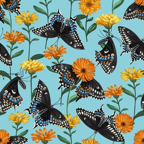 Black Swallowtails & Marigolds Sky Blue