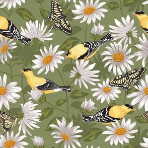 Goldfinches & White Asters