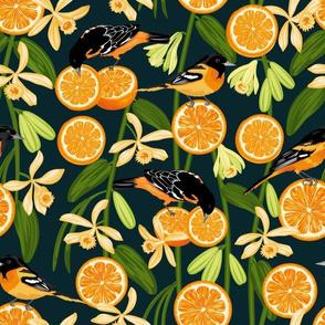 Birds & Oranges Dark