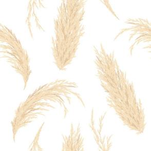 pampasgrasspattern