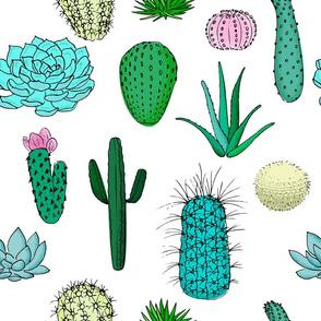 cactus pattern color 3
