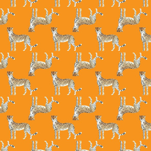 Cheetah Pattern Orange