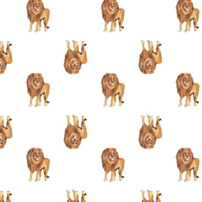Lion Pattern White