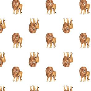 Lion Pattern White