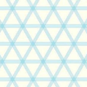Triangle Checks Blue