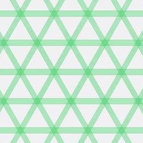Triangle Checks Grey and Green