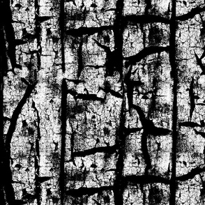 Rust Texture Black and White