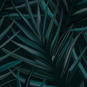 Dark palm leaves