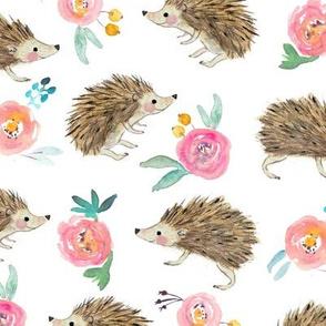hedgehog and roses