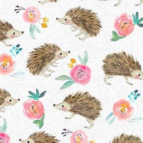 hedgehog and roses pink