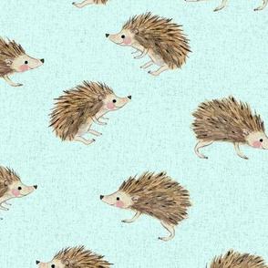 only hedgehog