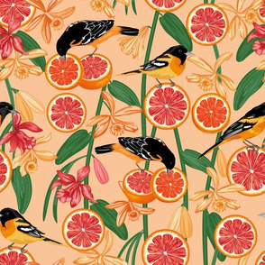 Pink Lemonade Peach Background