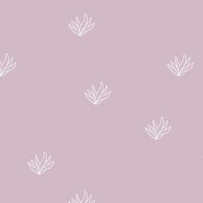 Aloe vera succulent boho garden minimal Scandinavian style plants abstract modern nursery mauve purple