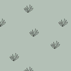 Aloe vera succulent boho garden minimal Scandinavian style plants abstract modern nursery sage green black
