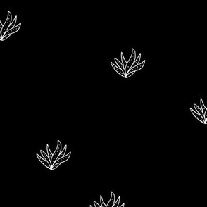 Aloe vera succulent boho garden minimal Scandinavian style plants abstract modern nursery monochrome black and white