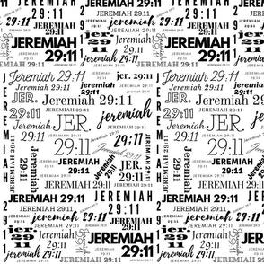 JER 2911