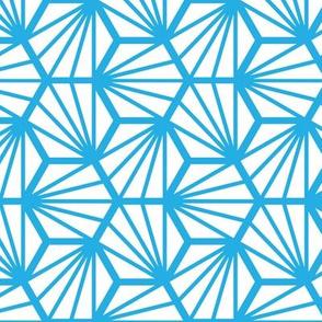 Geometric Pattern: Hexagon Ray: White Blue