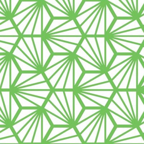 Geometric Pattern: Hexagon Ray: White Green