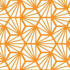 Geometric Pattern: Hexagon Ray: White Orange