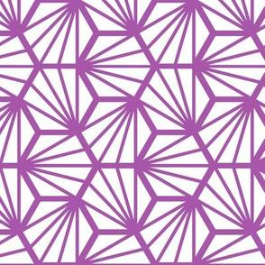 Geometric Pattern: Hexagon Ray: White Purple