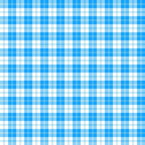 "Erskine dress sky blue tartan, 2"""