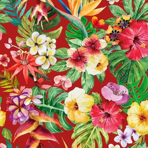 Tropical big flowers cherry background