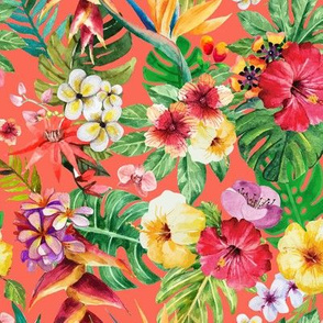 Tropical big flowers coral background