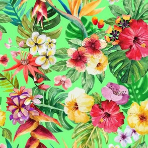 Tropical big flowers green background