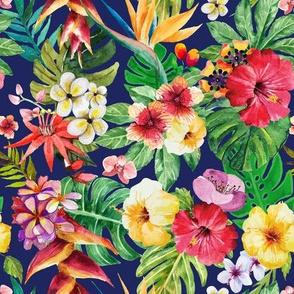 Tropical big flowers light dark blue background