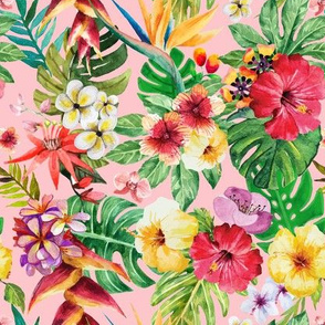 Tropical BIG flowers pink background