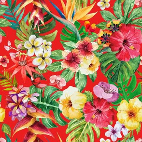 Tropical big flowers red background