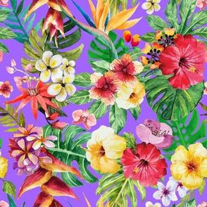 Tropical big flowers violet background