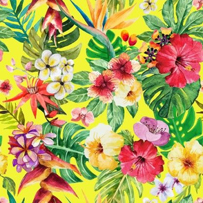 Tropical big flowers yellow background