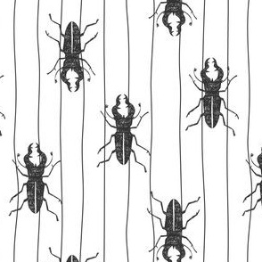Beetle on lines hand drawn