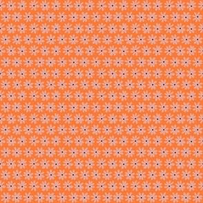 Flower Shower Tangerine