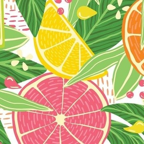 Tropical Citrus Fruit Slices—Light