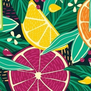 Tropical Citrus Fruit Slices—Dark