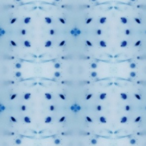 blueb 1