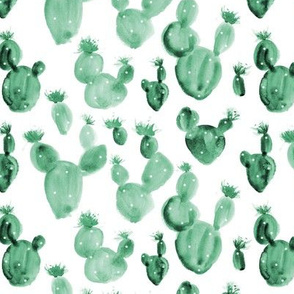 Watercolor royal cacti - painted cactus 261