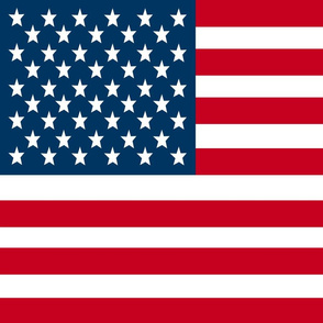 USA Flag fabric - FQ of linen cotton-canvas