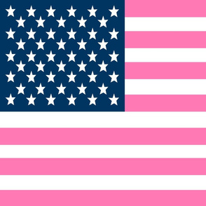 USA Flag fabric - FQ of linen cotton-canvas pink