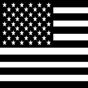 USA Flag fabric - FQ of linen cotton-canvas black and white