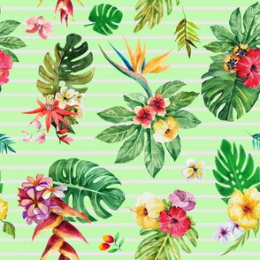 Tropical flowers _ leaves stripes green