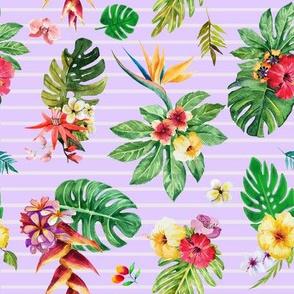 Tropical flowers _ leaves stripes violet