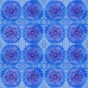 Blue and Purple Tie-Dye